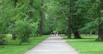 Bemowo park i las