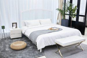 Rośliny do sypialni produkujące tlen nocą